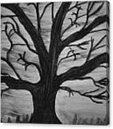 Old Tree With No Leaves Canvas Print