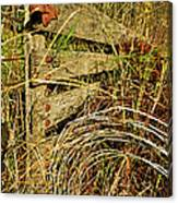 Old Weathered Gate Canvas Print