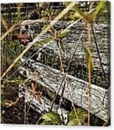 Old Weathered Gate Photoart II Canvas Print