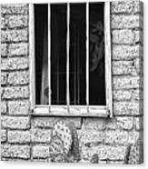 Old Western Jailhouse Window In Black And White Canvas Print