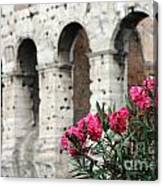 Oleander And Colosseum Canvas Print