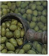 Olives Being Processed In Provence Canvas Print