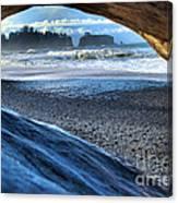 Olympic Drift Wood Canvas Print
