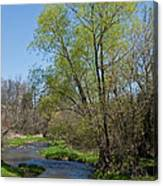 On The Banks Of Spring Canvas Print
