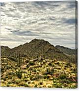 On The Top Of The Mountain  Canvas Print