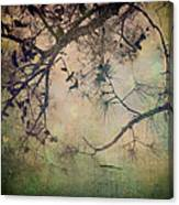 One Autumn Day Canvas Print