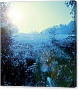 One Blue Morning Canvas Print