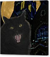One Dark Halloween Night Canvas Print