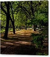 One Day In The City Park Canvas Print