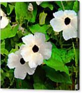 One Eye White Flower Canvas Print