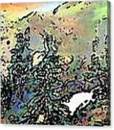 Opal Morning Canvas Print