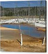 Opalescent Pool Of Yellowstone Canvas Print