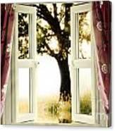 Open Window To Tree Canvas Print