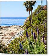 Orange County California Coastline Photo Canvas Print