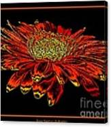 Orange Gerbera Daisy With Chrome Effect Canvas Print