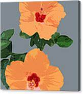 Orange Hibiscus Twins Canvas Print