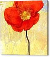 Orange Iceland Poppy On Yellow And Blue Canvas Print