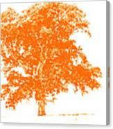 Orange Oak Canvas Print