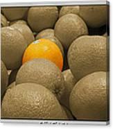 Oranges S.c.  Canvas Print