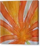 Oranje Bloemblaadje Canvas Print