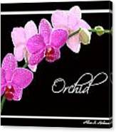 Orchid 2 2 Canvas Print
