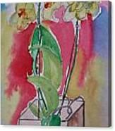 Orchida Canvas Print