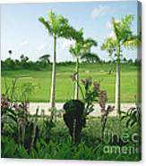 Orchids At Iberostar Golf Course In Punta Cana Dr Canvas Print