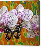 Orchids With Speckled Butterfly Canvas Print