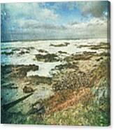 Oregon Coast Morning Canvas Print