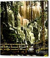 Oregon Wilds Canvas Print