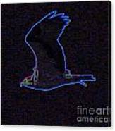 Osprey In Neon Blue Canvas Print