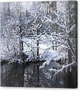 Our Pond In The Snow Canvas Print