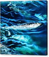 Out Fishing  Canvas Print