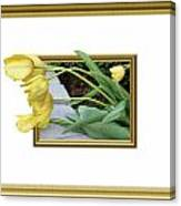 Out Of Frame Yellow Tulips Canvas Print