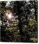 Out Of The Darkness He Calls Canvas Print