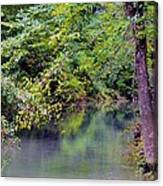 Overcast Reflections At Buck Creek Canvas Print