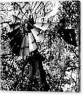 Overgrown Windpump Canvas Print