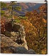 Overlook At Cecil Hollow Canvas Print