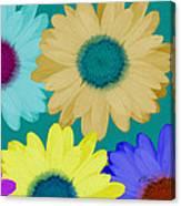 Oversize Daisies Canvas Print