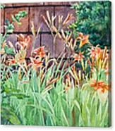 Oxenden Lilies Canvas Print