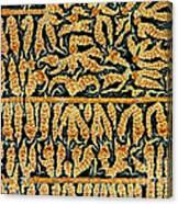 Oxidized Vitamin C Canvas Print
