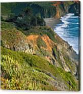 Pacific Shoreline Vii Canvas Print