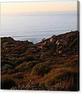 Pacific Vista Canvas Print