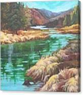 Pack River Color Canvas Print