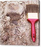 Paint Brush Next To Camarasaurus Canvas Print
