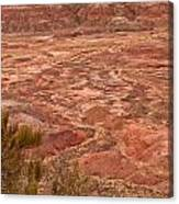 Painted Desert 12 Canvas Print