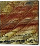 Painted Hills Lines Canvas Print