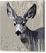 Painted Muley Canvas Print