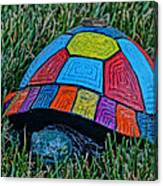 Painted Turtle Sprinkler Canvas Print
