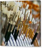 Painting Brushes Canvas Print